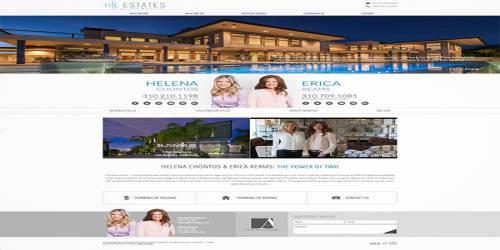 professional design website