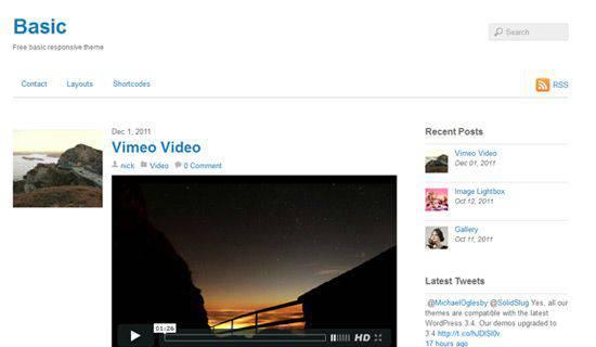 Basic WordPress Tema ekran görüntüsü