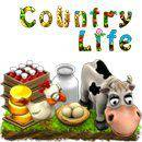 Facebook Country Life Oyunu