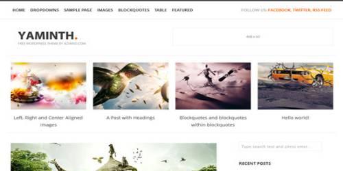 Yaminth WordPress Tema ekran görüntüsü